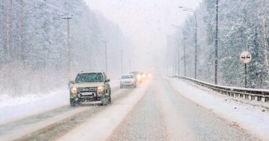 Морозы в Алтайском крае вновь сменятся метелями